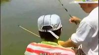 钓鱼技巧全攻略鲢鱼_鲇鱼钓鱼视频野钓实战