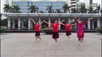 广场舞视频大全《歌在飞》糖豆广场舞2016年最新_高清