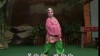 春蕾白字戏——《蓝继子》全集 白字戏 第1张