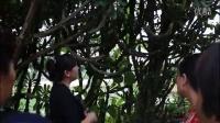 殷馨交谊舞——走进云南西双版纳景洪市神秘的傣族村寨
