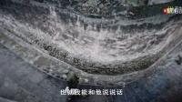 抗战主题公益广告:忠义老兵