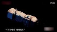 纪念中国航天60周年
