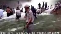 实拍:水库泄洪,大鱼被撞晕