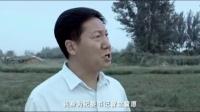 豫剧电影——《天职》超清版 豫剧 第1张