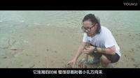 我花了一整天的时间,就在那这只螃蟹死磕