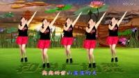 滨海新区汉沽和悦广场舞(红红的线)单人水兵