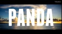 Martin Garrix ft. Marshmello - Panda