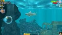 饥饿的鲨鱼 第二期 最终死在了炸弹的手里 亲子游戏 儿童益智游戏 大侠笑解