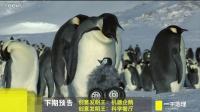 2017.01.11 创意发明王:机器企鹅 科学餐厅