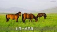 情醉草原(马儿演唱版)