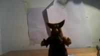 [昆昆上传]关于哥莫拉软胶的错误道歉;一些玩具闲聊