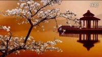 渔舟唱晚-小提琴-俞丽拿