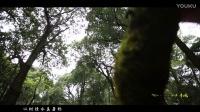 秘境·科桃 城市的后花园 [龙岩阳光映画]