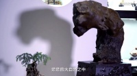 """侯现林:他收藏的这一方""""北京猿人""""奇石,被誉为国宝"""