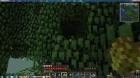 【NG冬瓜】我的世界-暮色森林树洞寻宝EP03