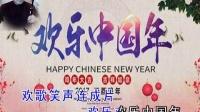二胡演奏   <<欢乐中国年>>