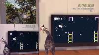 PS4模拟山羊《飞行大师》奖杯全过程,终于过了
