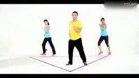 王广成 - 最炫民族风 (广场舞版)