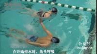 国外最完整的蝶泳泳分解动作练习专家演示(Potomac Marlins)(唯一中文字幕)