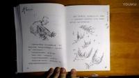 罗尔德达尔作品《魔法手指》故事1《魔法手指》P3(完结)