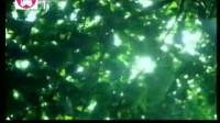 爱活者电视台开播片段98-2003