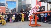 2017湛江市国武龙狮团贺年醒狮表演之凳桩步步高升、高桩醒狮,鸡年正月初一拜年醒狮