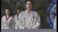 跆拳道 品式 跆拳道入门 考级  韩国黑带五段元致根 吴仁锡  V信BJJCDQ
