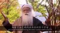 isha视频-张德芬专访Sadhguru/萨古鲁 5-4 关于瑜伽如何向内走