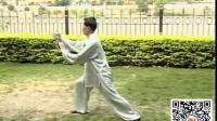 丁水德85式杨式太极拳教学
