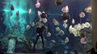 介绍潜水装备