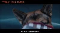 《一条狗的使命》特辑之四条腿的大明星