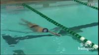 国外最完整的仰泳分解动作练习专家演示(Potomac Marlins)(唯一中文字幕)