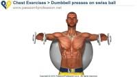 3D健身—健身球系列3—胸肌训练