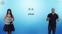 初级英语-第1课:自我介绍 Self-introductions