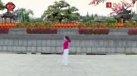 新月舞蝶广场舞 《你是我红尘中最美的缘》 原创编舞附教学