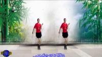 建群村广场舞《相伴一生》水兵舞演示制作 彩云追月2017年最新广场舞带歌词