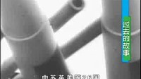 蒋介石(下)