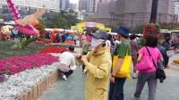 2013年香港花卉展……蝴蝶纷飞