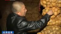 乌兰察布土豆滞销北京企业伸出援手