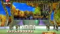 2011安徽卫视春晚:UPGirls《喀秋莎》