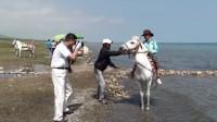 01青海湖