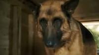 《猫狗大战2》最新预告 Cats and  Dogs 2-Trailer
