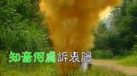 CTV 1985 楚留香新传-ktv-费玉清- 原唱+伴唱