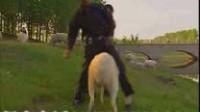 小尾寒羊养殖视频 圈养羊舍建设视频