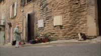 【岩合光昭】猫步走世界--南法浪漫田园
