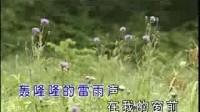 恋曲1990 罗大佑