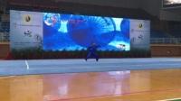 河南省全国武术之乡名人名家展示,宋水林通背拳2016.12陈家沟