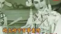 越剧(亮眼哥放牛)徐玉兰-伴奏