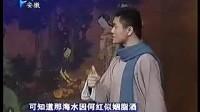 安徽省黄小梅花剧团成立5周年专辑3