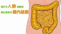 【味全】味全TV~肠胃好帮手:益生菌